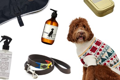 Collage of gifts for pets