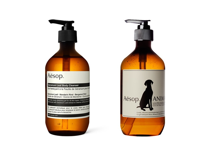 Aesop, You & Your Dog duo